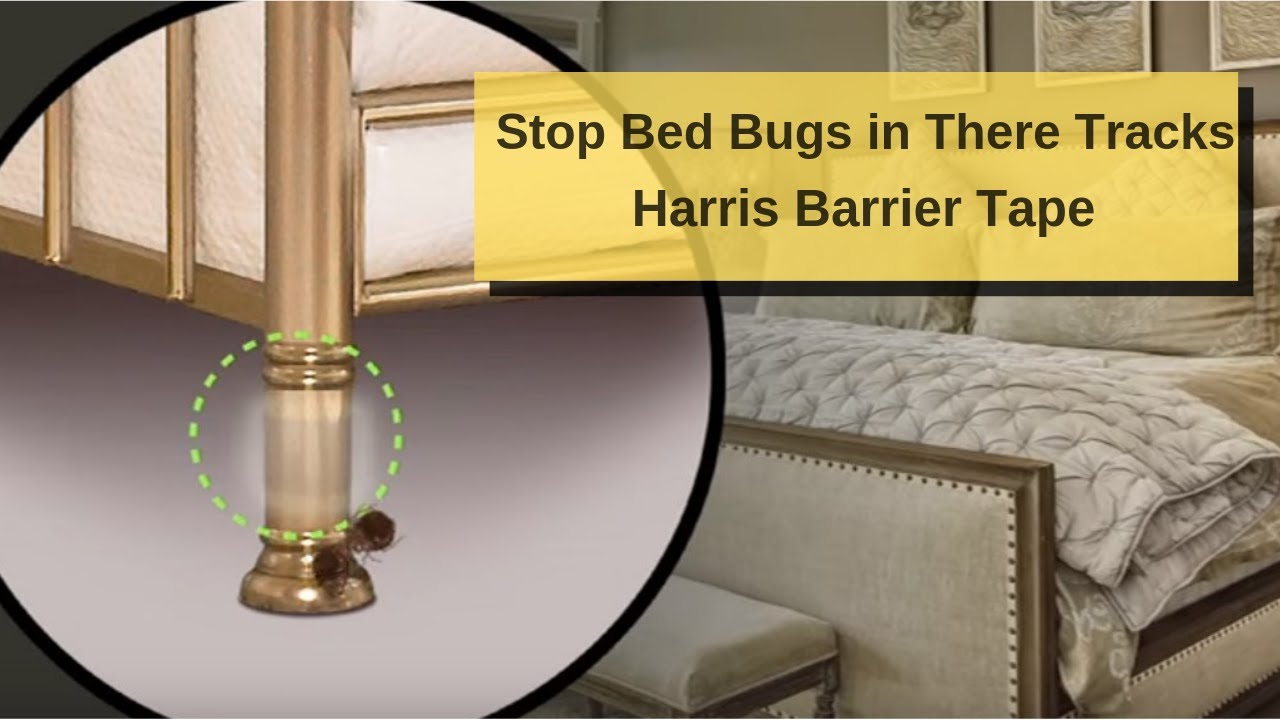 bed bug barrier tape review