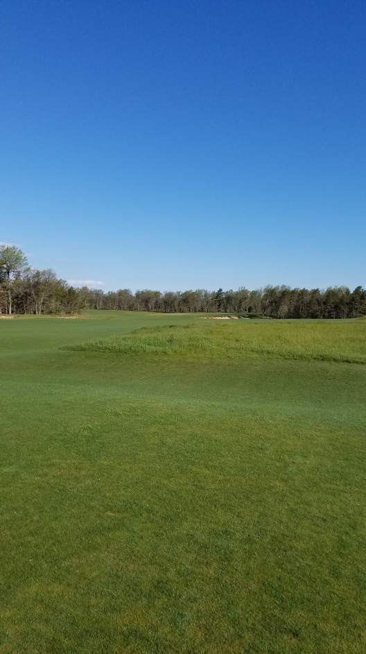 forest dunes the loop review
